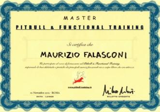 6.maurizio-falasconi-Pitbull Training_2012
